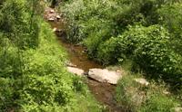 Environmental Sustainability Plan